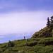 初夏の築山
