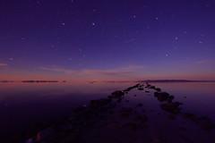 Shooting Star Over the Jetty (ashergrey) Tags: longexposure greatsaltlake meteor landart startrails boxelder spiraljetty shootingstar
