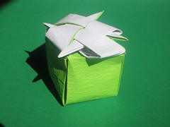 Oschene's Inexpressible Cube (georigami) Tags: origami papiroflexia papel paper