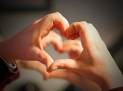 Lovely Hearts! [Explored!] (RiverCrouchWalker) Tags: lovelyhearts heart husband hands mirror reflection smileonsunday