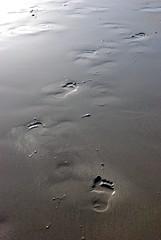 (Totoro') Tags: mer fuerteventura lanzarote canaries espagne plage corralejo anneccile nikond80 fairelacrpe