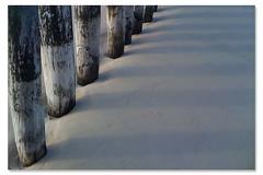 NORD (il G▲tto di vi▲ dei M▲cci) Tags: france grey mare grigio pali francia calais sabbia secca manica