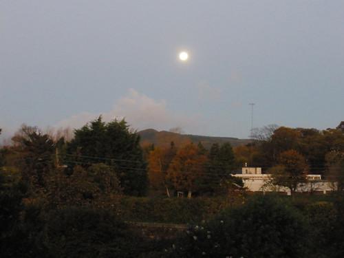 November moon..