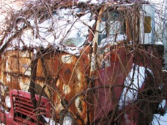 RUST ON WHITE (richie 59) Tags: trees winter white snow abandoned overgrown truck outside vines junk rust rusty rusted drives trucks newyorkstate oldtruck obsolete 2010 nystate rustytruck hudsonvalley 2door junktruck oldtrucks cabover ulstercounty rustyoldtruck twodoor americantruck whitetruck abandonedtruck midhudsonvalley rustyoldtrucks rustytrucks ulstercountyny whitetrucks ustrucks ustruck oldrustytruck americantrucks junktrucks white3000 cabovertruck abandonedtrucks 1950struck oldwhitetruck 1950strucks oldrustytrucks jan2010 jan62010 whitecabover oldwhitetrucks