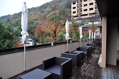 Tokyo 2009 - 箱根 - あうら橘(20)