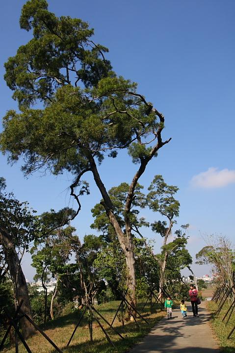 嘉義民雄森林公園003