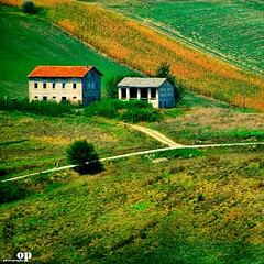 Rural-scape (Osvaldo_Zoom) Tags: houses italy green rural landscape country marche macerata agriscape yourwonderland