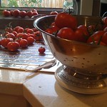 The Tomato weigh-in thumbnail