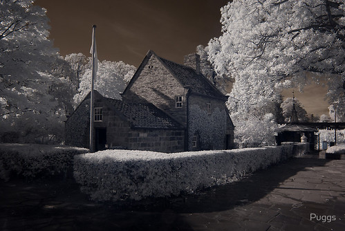 Cook's Cottage - Infrared