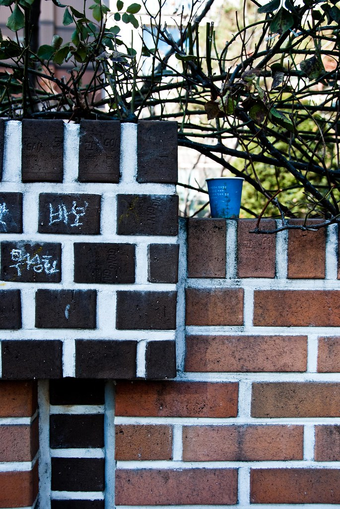 blue cup, red bricks