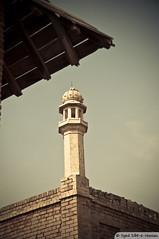 Minaret (Syed Sibt-e-Hassan) Tags: pakistan sky standing nikon alone artistic minaret misc scene stunning punjab cinematic vr masjid historicalbuilding woow 18200mm d90 bahawalpur supershot derawarfort derawar