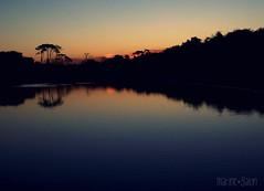 Hiver (la franchu) Tags: winter sunset sky reflection tree beach water night arbol atardecer agua eau hiver playa reflet ciel cielo reflejo invierno soir arbre plage aprsmidi tarde coucherdesoleil lafranchu