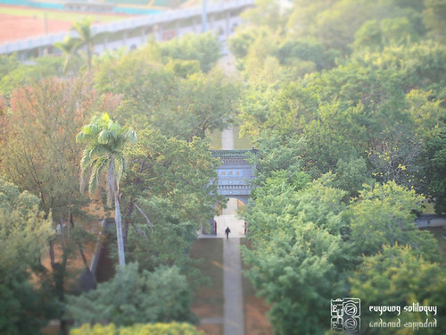Olympus_EP2_Chiayi_snap_17 (by euyoung)