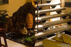 20100328_MG_0375An Indoor Sanctuary