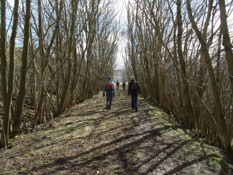 Walking along the disused railway line from Askrigg towards Castle Bolton