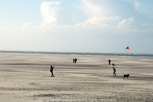 Bassa marea
