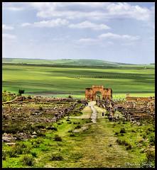 Triumphal Arch ! (Bashar Shglila) Tags: city mountains green de ancient arch roman triomphe morocco maroc marruecos larc volubilis meknes triumphal caracalla  mequinez  mekns    walili      thepowerofnow