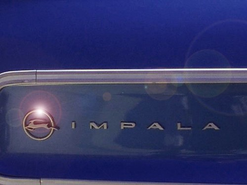 Impala Logo by Lucia1031