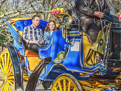 early spring day-2 (albyn.davis) Tags: nyc newyorkcity centralpark people couple man woman carriage colors colorful bright vivid vibrant blue yellow weather spring usa manhattan light sunlight shadows