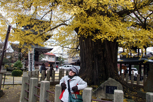 Takayama-pueblo-31