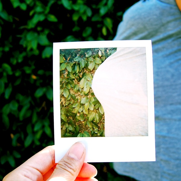 belly shot and polaroid