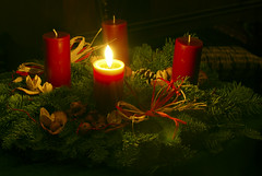 waiting (Fe 108Aums) Tags: advent candle quote adventwreath week1 psaml130