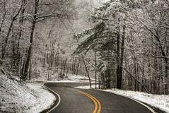 First Snow of the Season (konrad_photography) Tags: trees snow mountains virginia roanoke va snowfall 2009