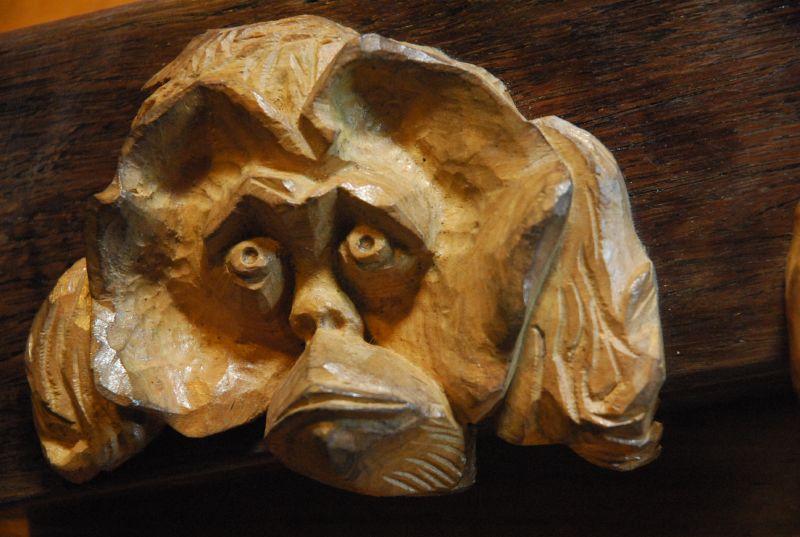 Orangutang head