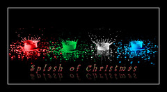 Splash of Christmas