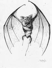Bram Stoker's Dracula Illo on ebay.
