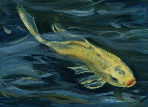 Koi study series: yellow