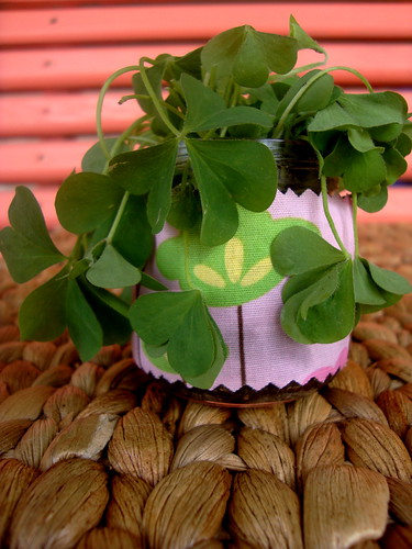 Sweet Shamrock Jar