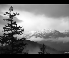 Tantalus Lookout (Linda Goodhue) Tags: road trees blackandwhite mountains misty vancouver clouds landscape geotagged whistler nikon highway view britishcolumbia foggy scenic lookout squamish mistymountains seatoskyhighway 18200mm d80 nikond80 tantaluslookout lindagoodhuephotography