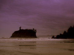 Ruby Beach, Olympic National Park, Washington (stephenandjes) Tags: seattle sunset shadow cloud reflection rain silhouette fog forest island coast washington nationalpark twilight purple pacific northwest tide picasa wave eerie sound beaches fir olympic douglas forks rubybeach peninsula monolith strait puget