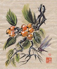 Loquat Fruit and Dragonfly (plasticpumpkin) Tags: food orange plants fruit berries insects bugs tropical loquat fruittree brushpainting