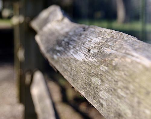 DOF Fence