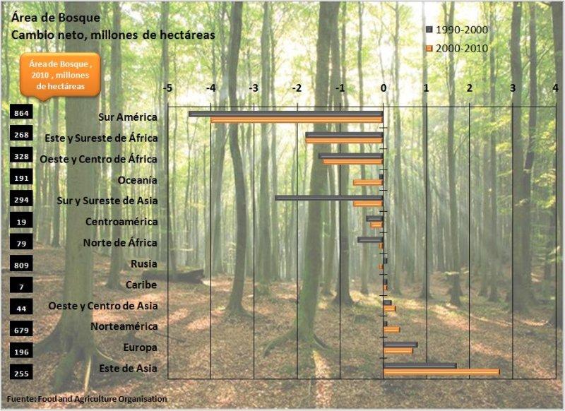 Área de Bosque