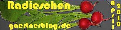 Garten-Koch-Event April: Radieschen [30.04.2010]