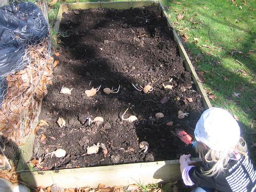 gardening042010 039