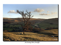 An Evening Above Arncliffe (SteveMG) Tags: sunset tree landscape yorkshire smg picturesque yorkshiredales arncliffe littondale