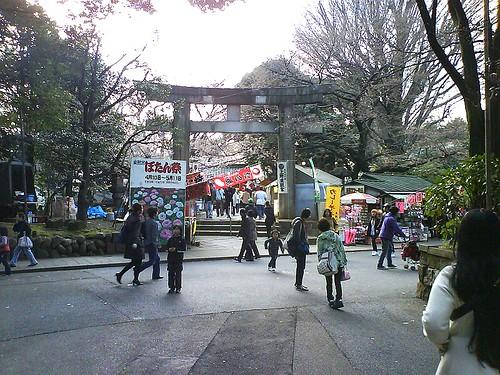 Ueno Park 06