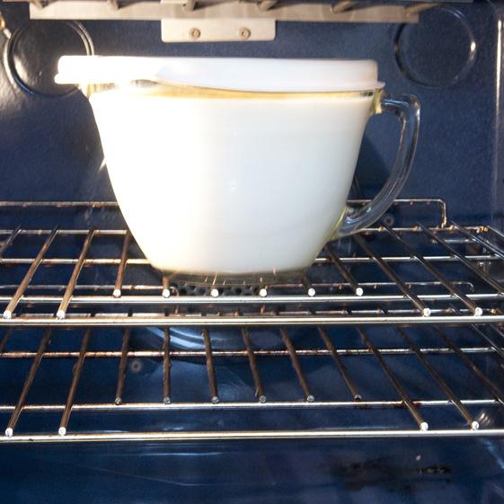 incubating yogurt, warm oven