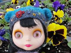ADAD.107: spring flowers...