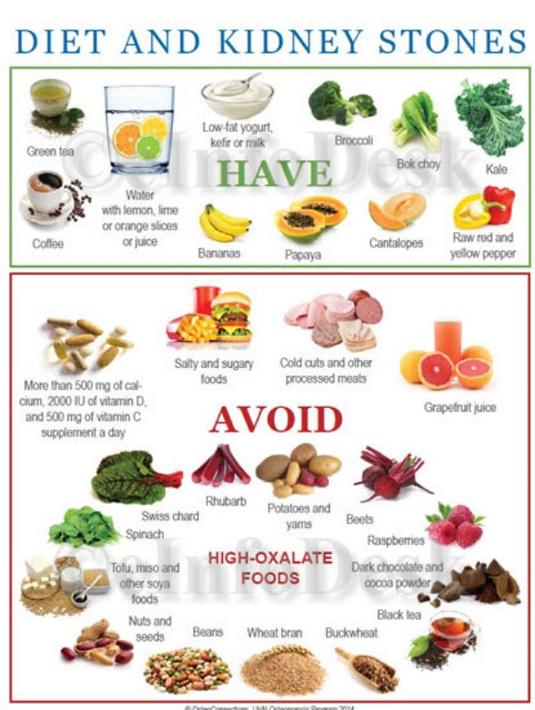 Canine Kidney Diet Food