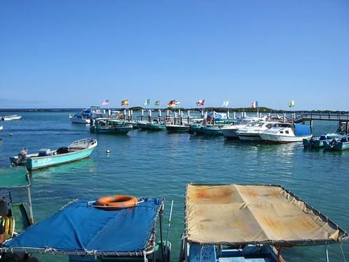 Isabela-Docks-Galapagos