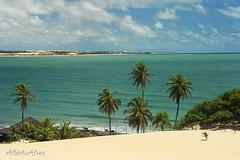 Dunas de Genipabu - Natal-RN (Alberto Alves) Tags: brasil natal viagens dunas paisagens genipabu nordeste albertoalves