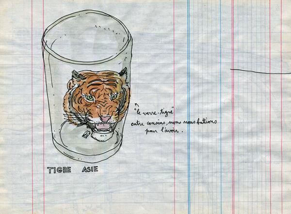 le verre tigre