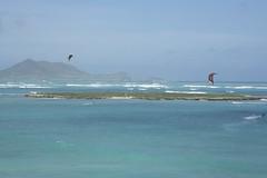 IMG_6583.jpg (Andie712b) Tags: ocean hawaii waves swell kailua lanikai