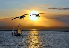 DAEDALUS & ICARUS (Cruithneacht) Tags: uk sunset sea england lake west river boats kirby marine sailing dee wirral seaguls