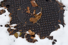 CITY (Andy Marfia) Tags: winter snow chicago leaves iso800 cover manhole sewer andersonville f8 allrightsreserved d90 1640sec 1250sec andymarfia 1685mm